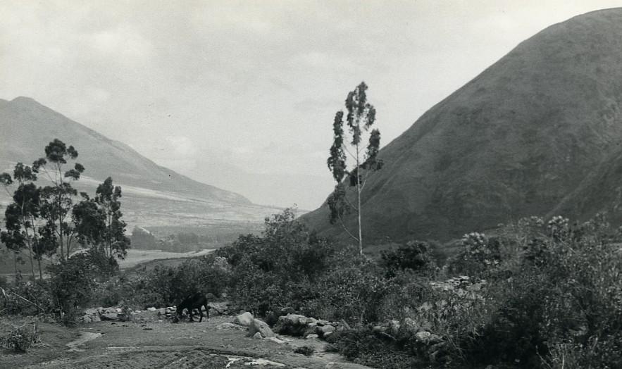 Ecuador_Micias_Boy_of_the_Andes_Landscape_old_Photo_Gerard_Beauvais_1965_Gérard_Beauvais__