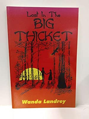 Lost in the Big Thicket: A Mystery: Wanda A. Landrey,