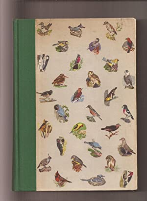 American Birds In Color, Land Birds
