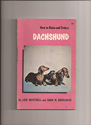 How To Raise and Train a Dachshund