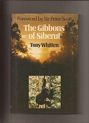 The Gibbons of Siberut