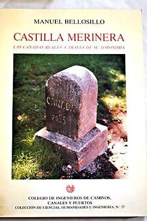 Castilla merinera: las cañadas reales a través de su toponimia: Bellosillo, Manuel