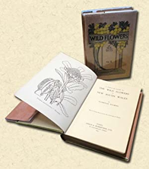 A Popular Guide to the Wild Flowers: Sulman, Florence (Eirene