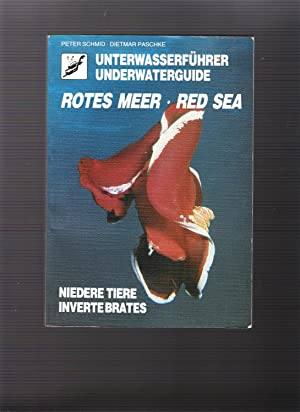 Unterwasserführer - Unterwaterguide - Rotes Meer -: Schmid Peter, Paschke