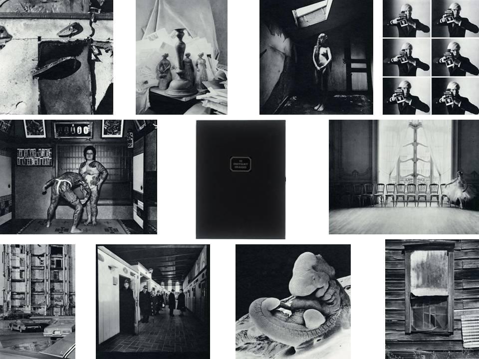 Twelve Instant Images on Polaroid Type 105 Positive/Negative Film (Limited Edition Portfolio ...