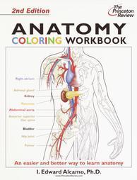Anatomy Coloring Workbook, Second Edition (Bk. 2): Alcamo, I. Edward