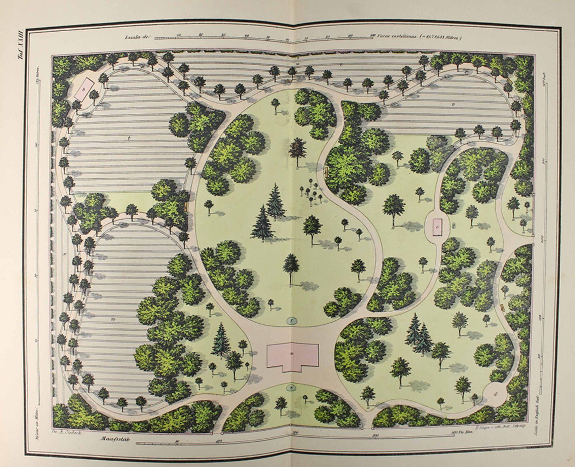 vialibri guide pratique du jardinier paysagiste album de 24 plans colori s sur la composition. Black Bedroom Furniture Sets. Home Design Ideas