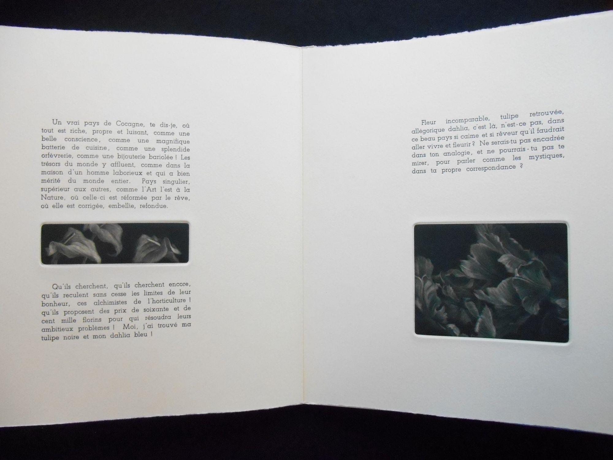 Linvitation Au Voyage Artist Book Judith