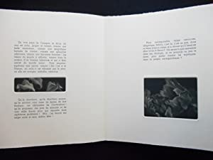 L'Invitation au Voyage [ARTIST BOOK - Judith Rothchild]; Petit Poeme en Prose: Baudelaire, ...