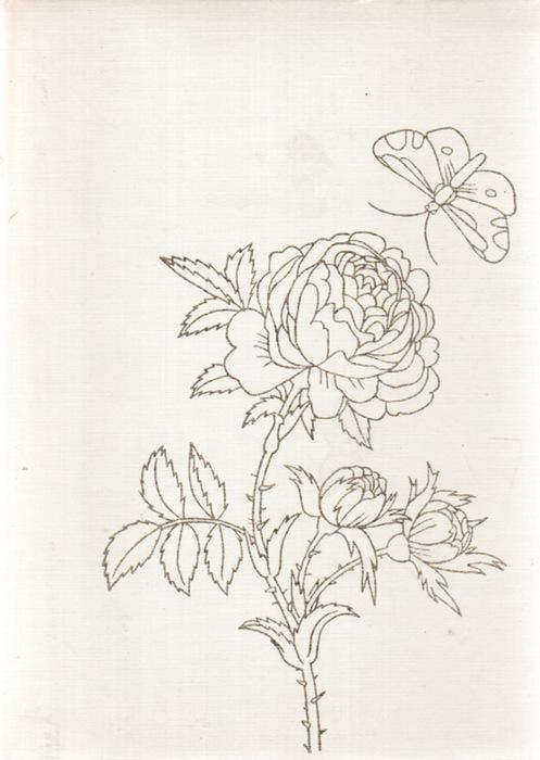 Rosen Und Vergißmeinnicht Blumen Und