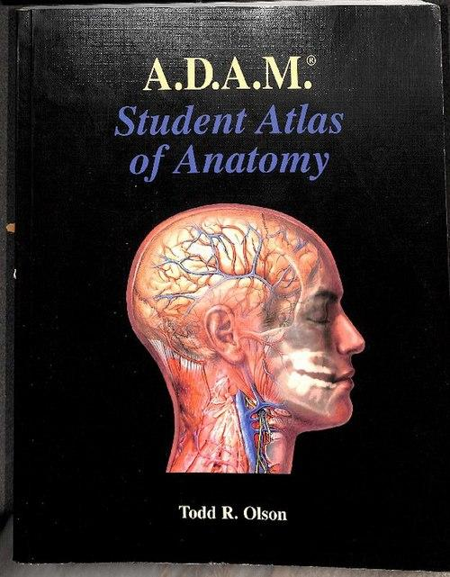 Adam Student Atlas Of Anatomy Chapter 1 8 1 Trunk Body Wall