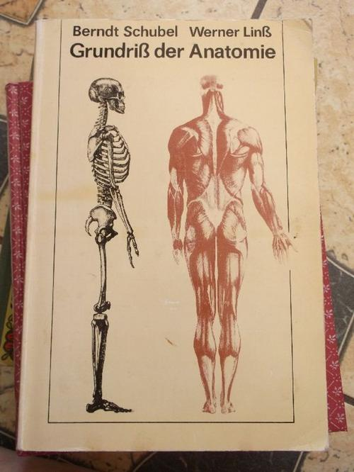 funktionelle anatomie topographie - ZVAB