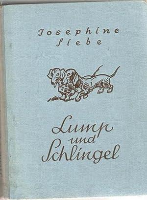 Lump und Schlingel ein schlimmes Brüderpaar eine lustige Dackelgeschichte mit 40 Zeichnungen ...