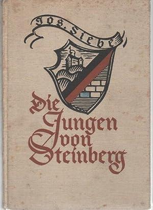 Die Jungen von Steinberg eine Erzählung aus der Zeit der Befreiungskriege von Josephine Siebe ...