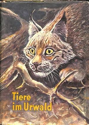 Tiere im Urwald - Erlebnisse im Naturschutzgebiet von Belowesh Tiergeschichten von Georgij ...