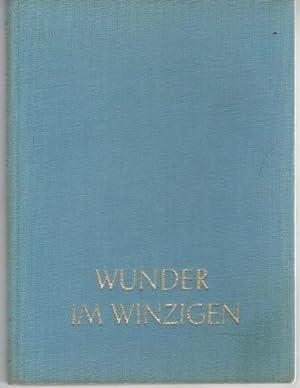 Wunder im Winzigen : Filigrane der Natur Fritz Siedel: Siedel, Fritz