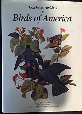 Birds of America: John James Audubon