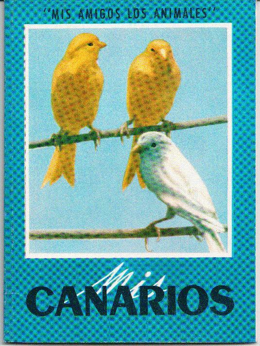 Mis canarios