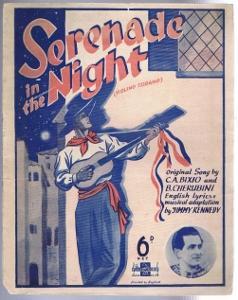 Serenade in the Night (Violino Tzigano): C. A. Bixio