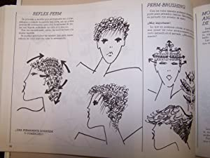 LA PELUQUERIA HOY: A. BELLVER