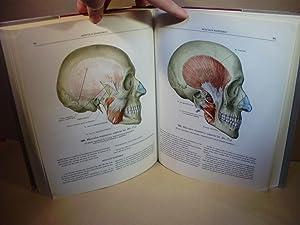 ATLAS DE ANATOMÍA HUMANA. Tomo I. Estudio de los huesos, articulaciones, ligamentos y m&...