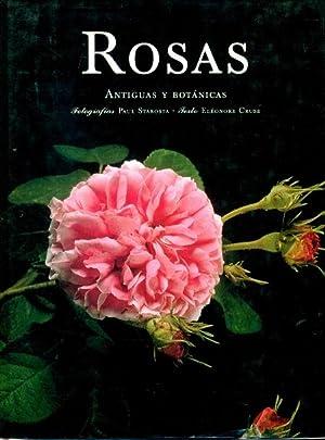ROSAS. Antiguas y Botanicas: CRUSE, ELEONORE (texto) - PAUL STAROSTA (fotografias)