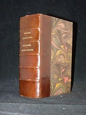 Apionides, tribu des curulionides. - Monographie des: WENCKER & DU