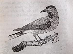 History of British birds: BEWICK Thomas