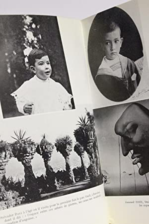 La vie secrète de Salvador Dali: DALI Salvador