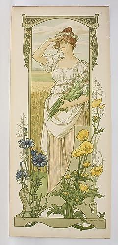 Fleurs des champs: SONREL Elisabeth