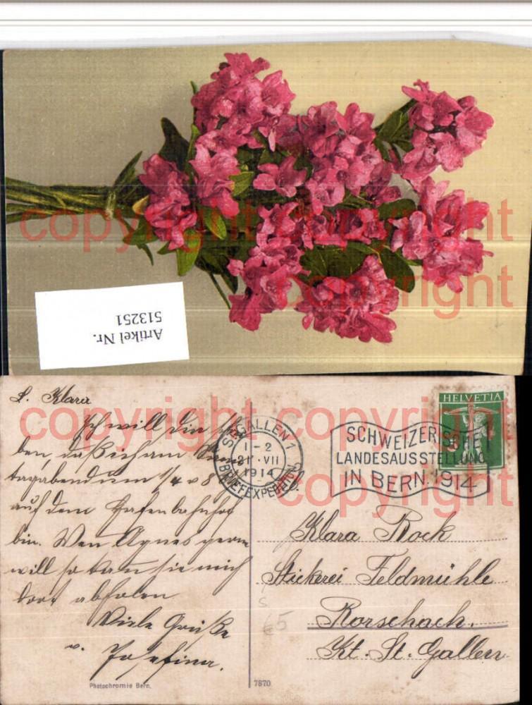 513251,Stempel St. Gallen 1914 Schweizerische Landesausstellung Bern