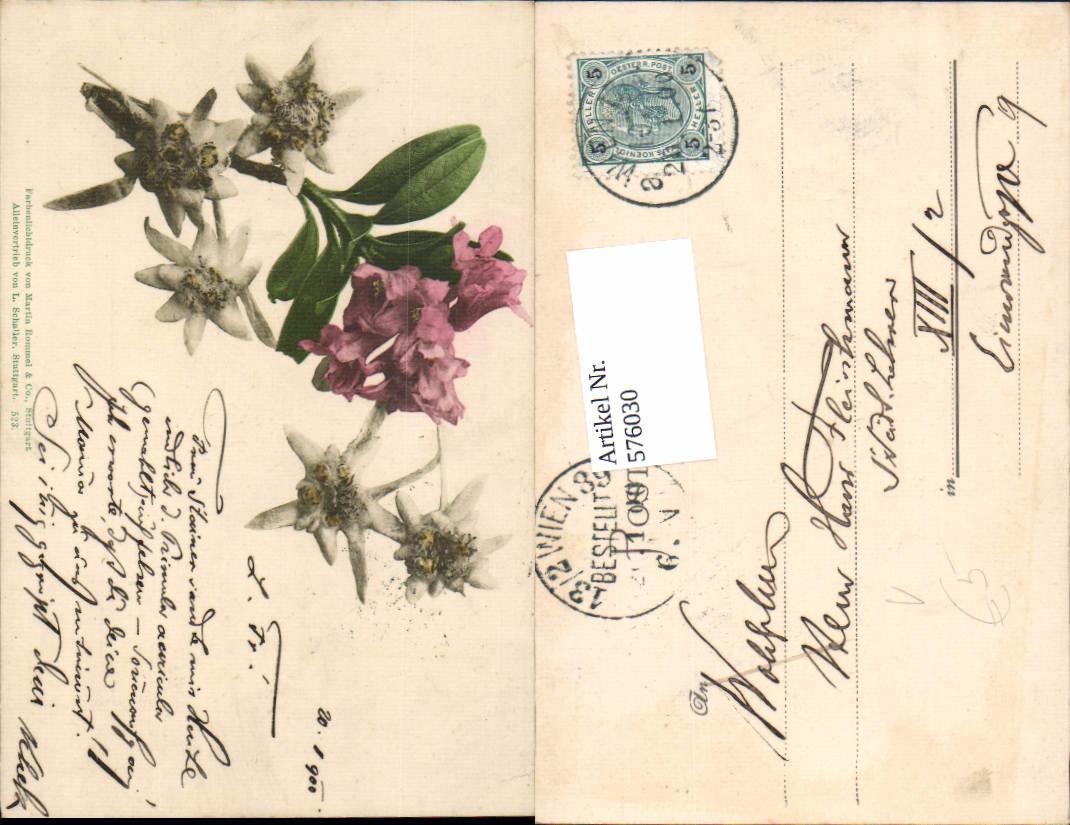 das edelweiss botanik - ZVAB