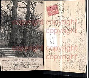 461579,Aquitanien Lot-et-Garonne Nerac Les 2 Ormeaux Bäume