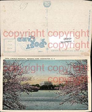 454043,Washington DC Potomac Park Lincoln Memorial Baumblüte