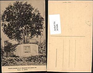 397696,Lazio Roma Rom S. Sabina Arancio piantato