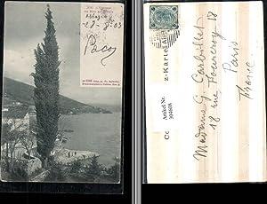 304608,Icici Cypresse m. Blick auf Abbazia Opatija