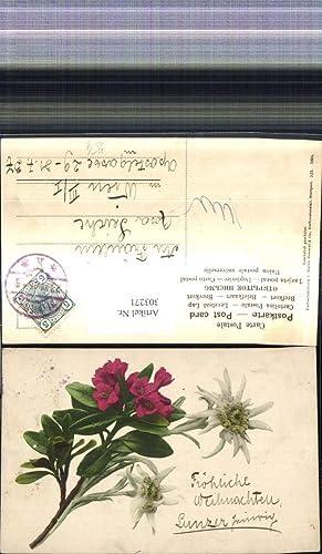 303271,Blumen Strauß Edelweiß Alpen Oleander Gebirgsflora pub