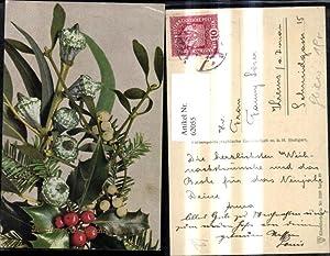 62055,Weihnachten Stechpalmen Mistel Tannen Zweige
