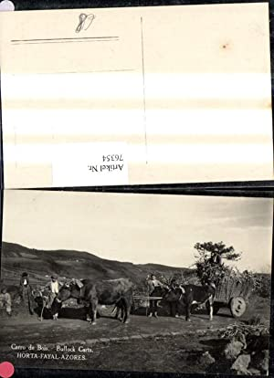 76354,Horta Fayal azores Insel Faial Carro de