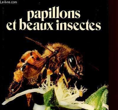 PAPILLONS ET BEAUX INSECTES - SCIAKY