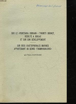 SUR LE PUNCTARIA CROUANI - BORNET, RECOLETE A SOULAC ET SUR SON DEVELOPPEMENT - SUR DEUX ...