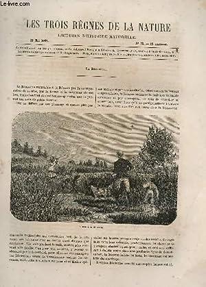 LES TROIS REGNES DE LA NATURE - LECTURES D'HISTOIRE NATURELLE / DEUXIEME ANNEE - N°73...