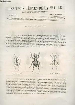 LES TROIS REGNES DE LA NATURE - LECTURES D'HISTOIRE NATURELLE / TROISIEME ANNEE - N°121 - 21 ...