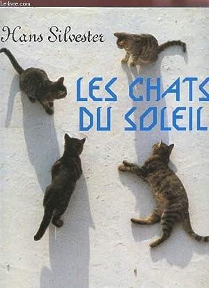 LES CHATS DU SOLEIL.: SILVESTER HANS