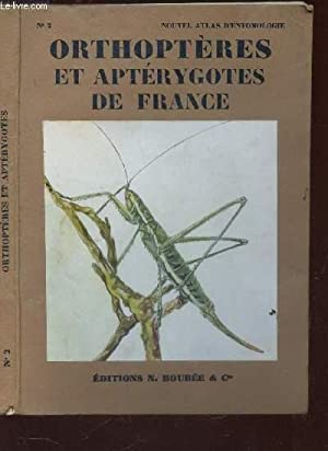 NOUVEL ATLAS D'ENTOMOLOGIE - ORTHOPTERES ET APTERYGOTES: AUBER LUC