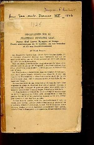 OBSERVATION SUR LE PERITHOUS MEDIATOR GRAV. : Ponte - oeuf - larve - nymphe et imago - Etude ...
