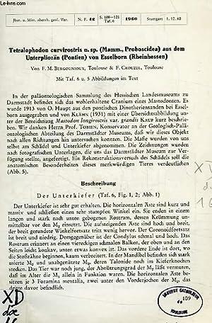 TETRALOPHODON CURVIROSTRIS N.SP. (MAMM., PROBISCIDEA) AUS DEM UNTERPLIOZÄN (PONTIEN) VON ...