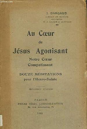 AU COEUR DE JESUS AGONISANT - NOTRE COEUR COMPATISSANT - DOUZE MEDITATIONS POUR L HEURE SAINTE - ...