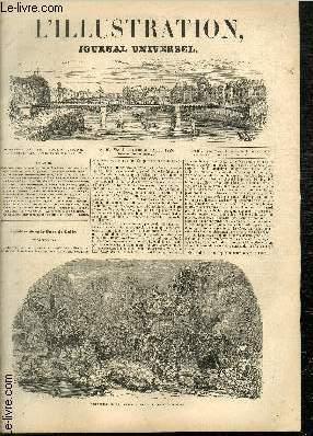 L'ILLUSTRATION JOURNAL UNIVERSEL N° 23 - Troubles dans le Pays de (ialles. Les Rébeccaïtes. ...