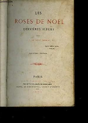 LES ROSES DE NOEL - DERNIERES FLEURS: DE SAINT GERMAIN